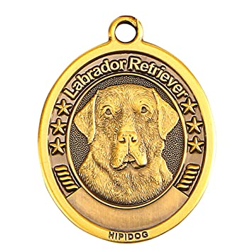 amazon com brass dog tags for dogs engraved custom dog name tag