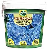 Azzurro Color Ortensie - 1000 gr. MondoVerde