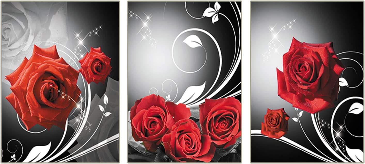 """Unframed Modern Art Black and White Wall Romantic Red Rose Flower Poster Art Painting Set of 3 ("""" 8x10""""Canvas Picture) Girl Bedroom Spa Bathroom Art Prints Living Bedroom Corridor Kitchen Home Decor"""