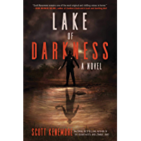 Lake of Darkness: A Novel book cover