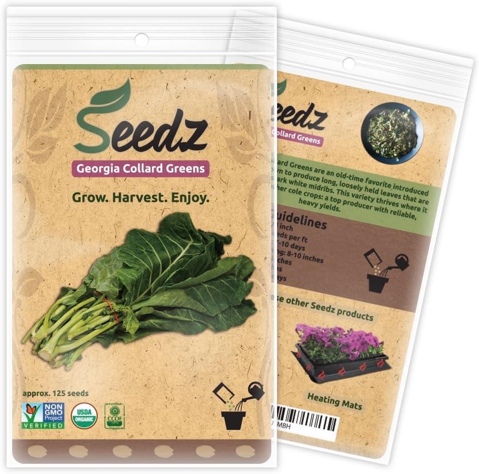 Organic Collard Greens Seeds, APPR. 125, Georgia Collard Greens, Heirloom Vegetable Seeds, Certified Organic, Non GMO, Non Hybrid, USA