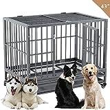 Amazon Com Proselect Empire Cages Medium Pet Cages