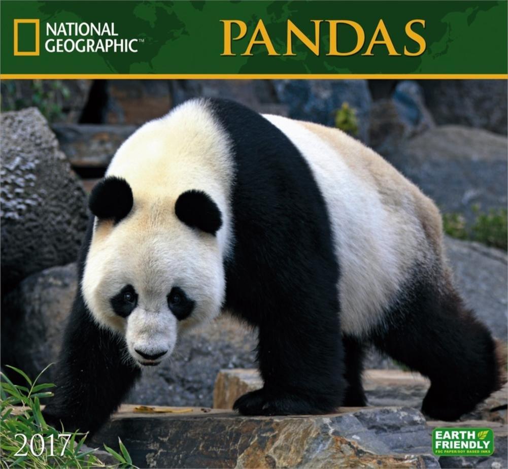 National Geographic Pandas - 2017 Calendar 13 x 12in