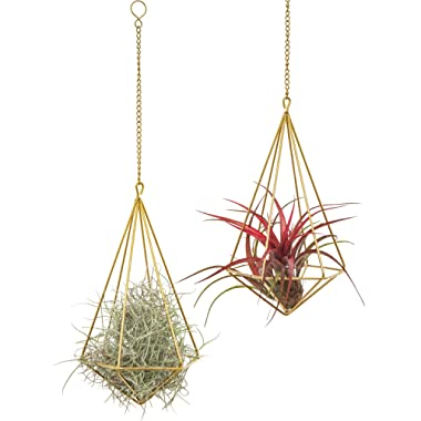 Mkono Hanging Air Plant Holder Modern Geometric Planter with Chain Tillandisia Container Himmeli Wall Decor, Gold, 2 Packs