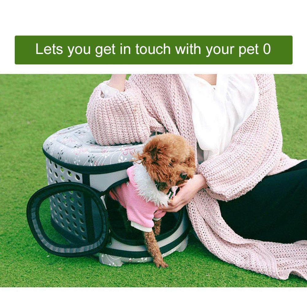 Yoome Caseta de Viaje Plegable para Mascotas para Gatos, Perros Pequeños y Conejos, Portátil y Transpirable, 3 Colores para Elegir: Amazon.es: Productos ...