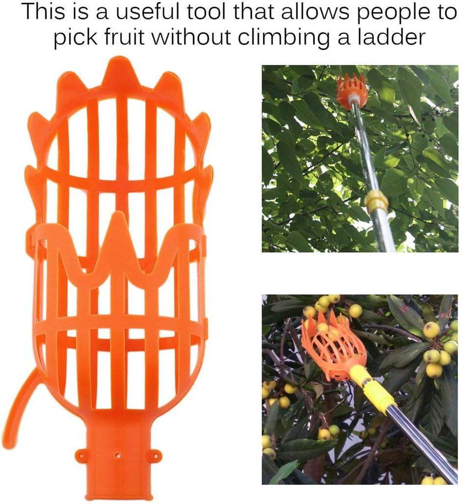 Qingchul Praktische gartenbauliche Obstpfl/ücker Kopf Gartenpfl/ückwerkzeuge Sicher Langlebig Einfach Fr/üchte vom Baum zu bekommen