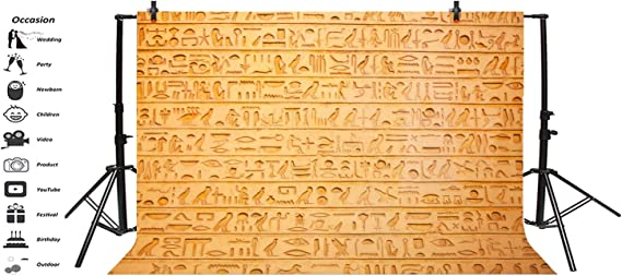LFEEY 10x8ft Wall Hieroglyphs Photo Backdrop Ancient Egypt Antiquity Civilisation Culture Hieroglyphic Word Stone Sculpture Background for Photography Travel Tourism Photo Booth Prop