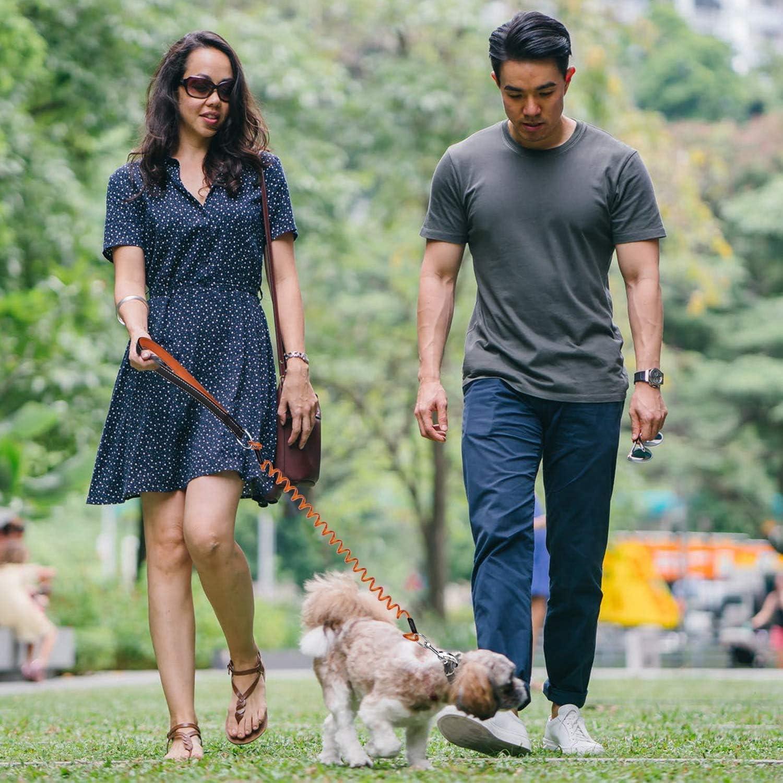 medianos y grandes antigolpes correa de entrenamiento de 5 pies a prueba de masticar para perros peque/ños color naranja//azul con asa acolchada U-picks Correa extensible para perro