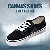 Camel Mens Canvas Sneakers Classic Skateboard Low