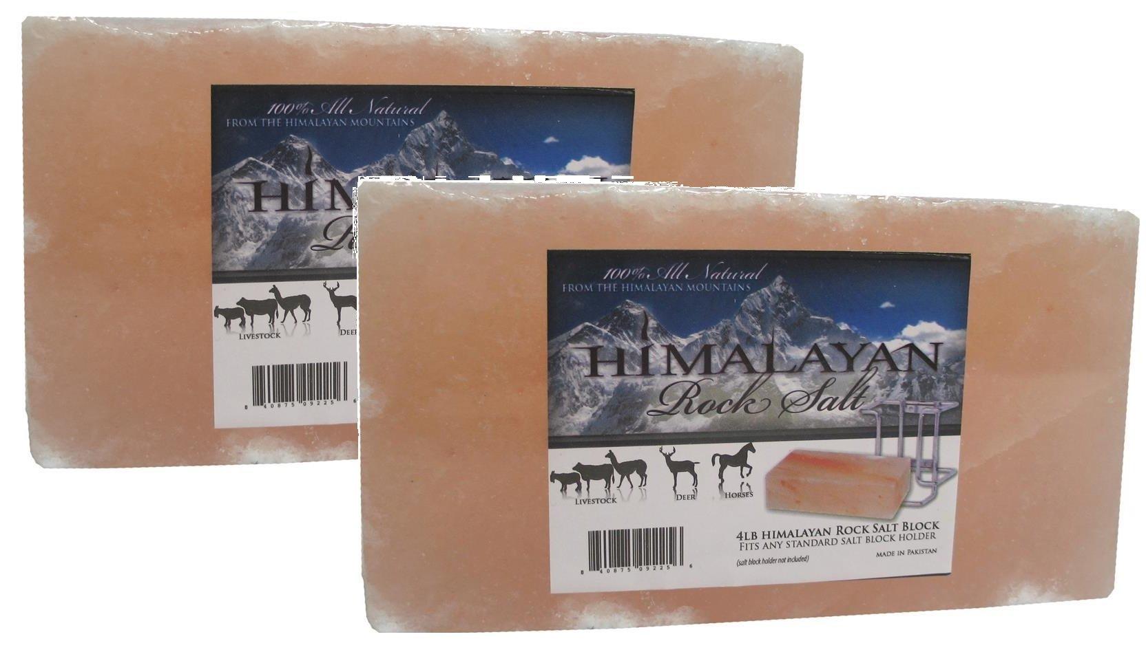 (2 Pack) Talisker Bay Himalayan Salt Brick 4Lb