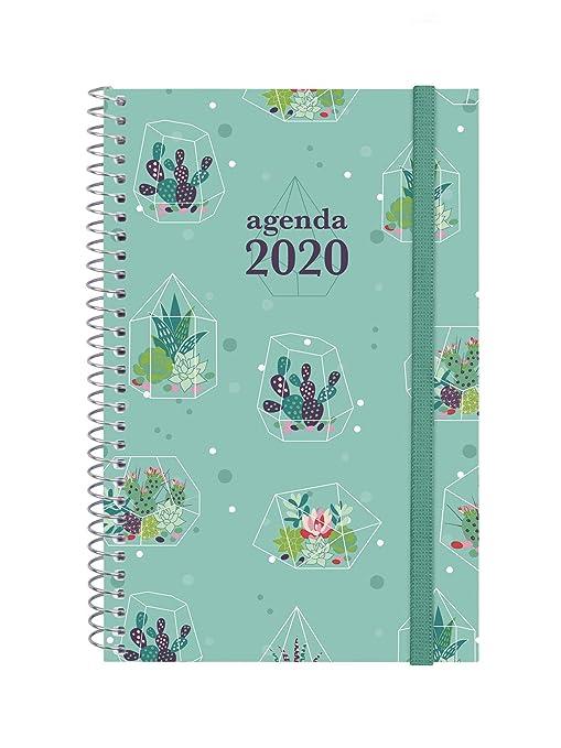 Amazon.com : Finocam - Agenda 2020 Week View Landscape ...