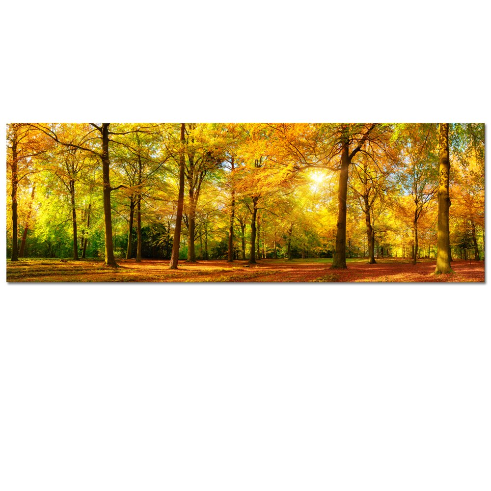Amazon large size autumn forest canvas wall art prints white large autumn forest canvas wall art printsautumn tree forest painting printed on canvas amipublicfo Images