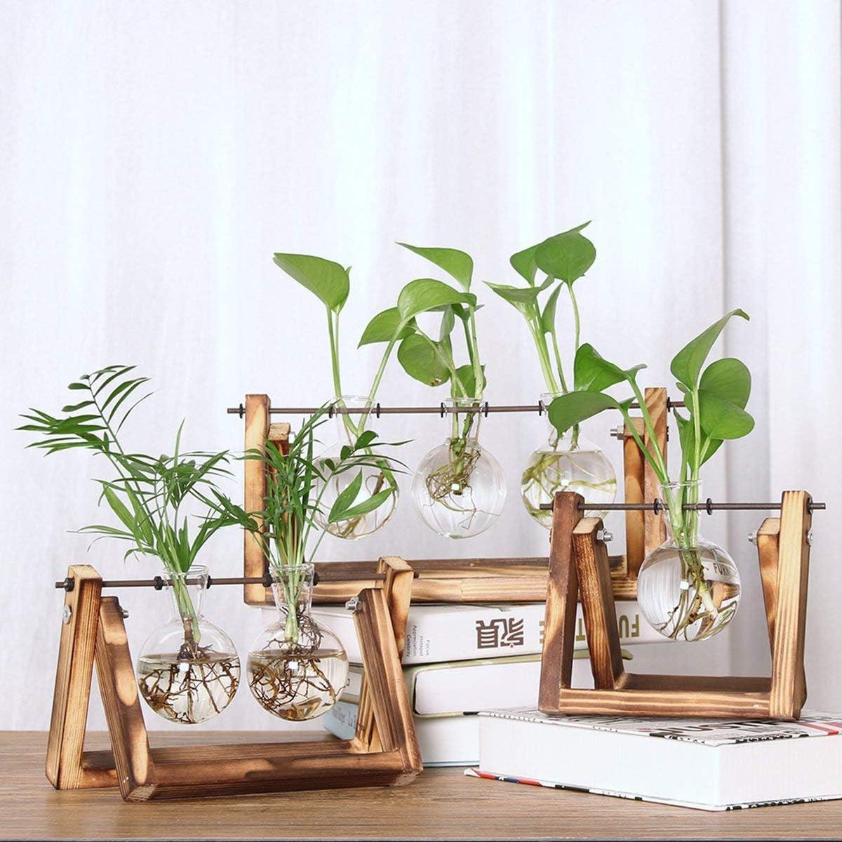 Greatangle Vaso da Tavolo per fioriera in Vetro da Tavolo con Supporto in Legno Massiccio retr/ò e Supporto Girevole in Metallo per Piante idroponiche