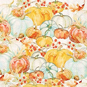 Boston International C028900 IHR 20-Count 3-Ply Cocktail Beverage Paper Napkins, 5 x 5-Inches, Watercolor Pumpkins