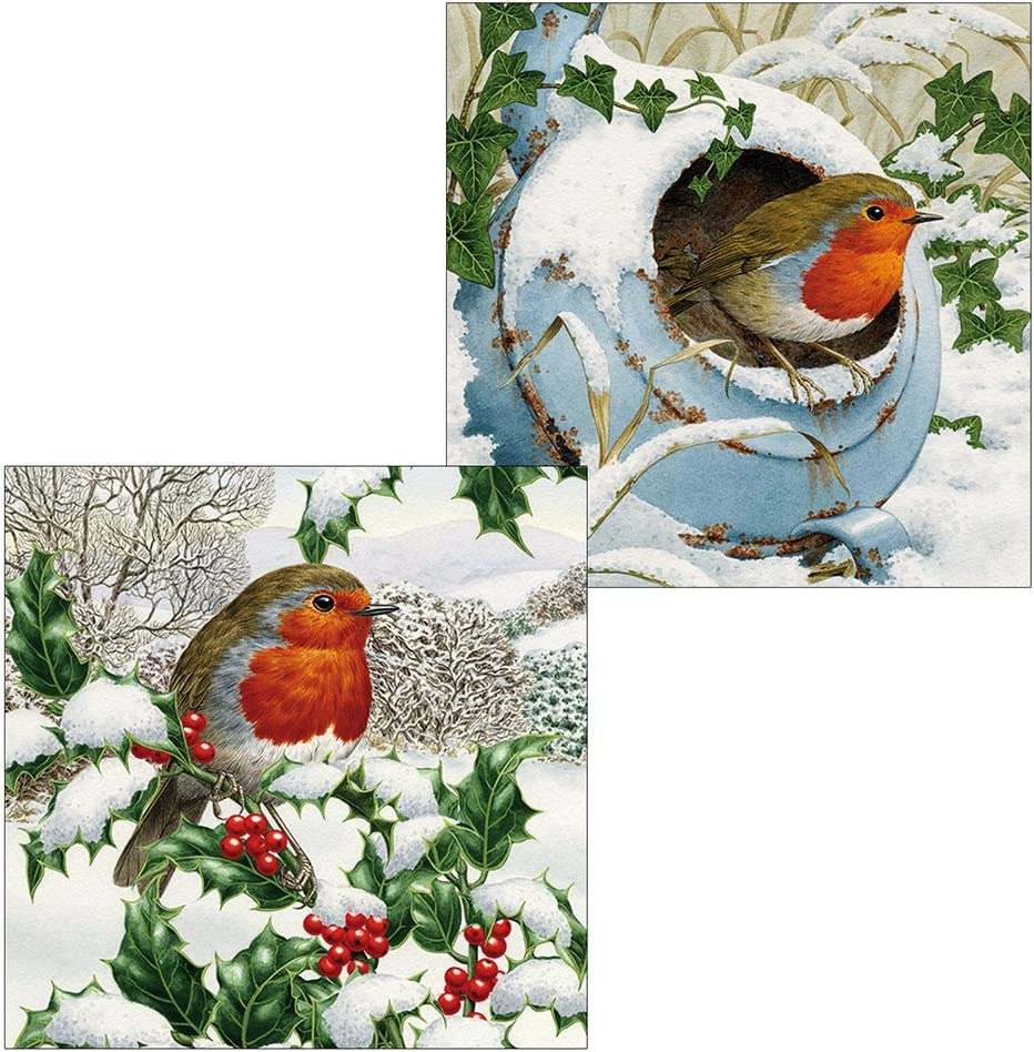 Robin and Mistletoe Pack of 10 Christmas Cards