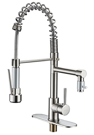 Eyekepper Brushed Nickel Kitchen Sink Faucet Pull Out Down Sprayer Mixer  Taps Wet Sink Bar Faucets