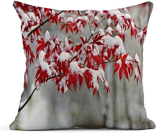 Cojín Hoja Hojas de Arce Rojo en nevando Jardín de Invierno La Nieve Pesada está a la Deriva Planta Que Cae Cojín de Lino Almohada Decorativa para el hogar: Amazon.es: Jardín