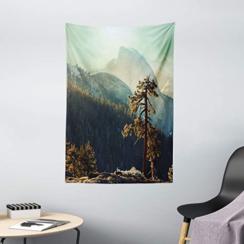 Ambesonne Yosemite Tapestry, Yosemite National Park from The Top of Mountain Misty Morning Landscapes Photo, Wall Hanging for Bedroom Living Room Dorm Decor, 40 X 60 , Teal Brown