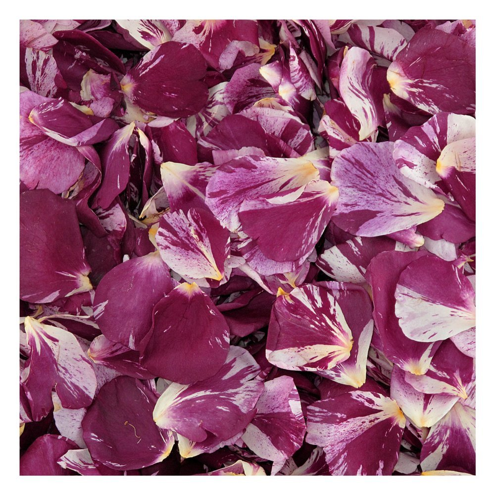 Lucky in Love Rose Petals - 120 cups Wedding Petals by Flyboy Naturals