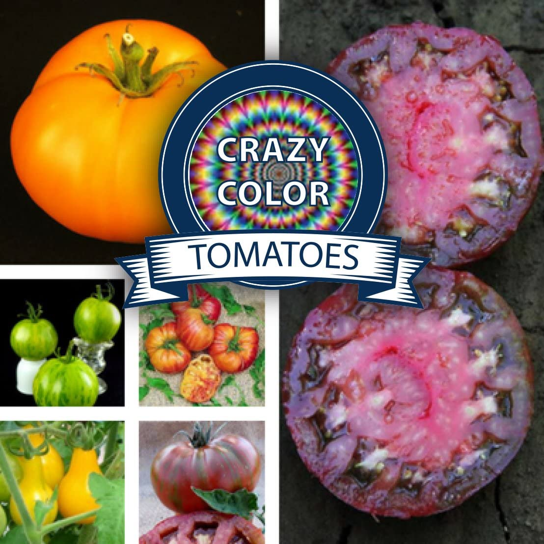 Best Beefsteak Tomato Seed Collection - 6 Variety Pack - Non-GMO Heirloom Beef Steak Tomato Seeds for Planting by Sustainable Seed Company (Collection Only)