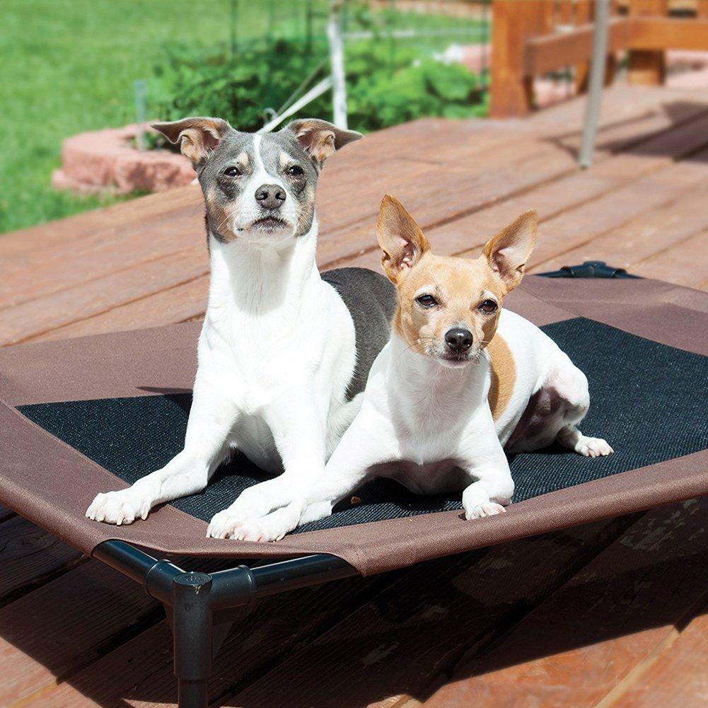 Zantec Mascota cómoda suave de la cama de la malla del gato del animal doméstico del gato del perro casero: Amazon.es: Hogar
