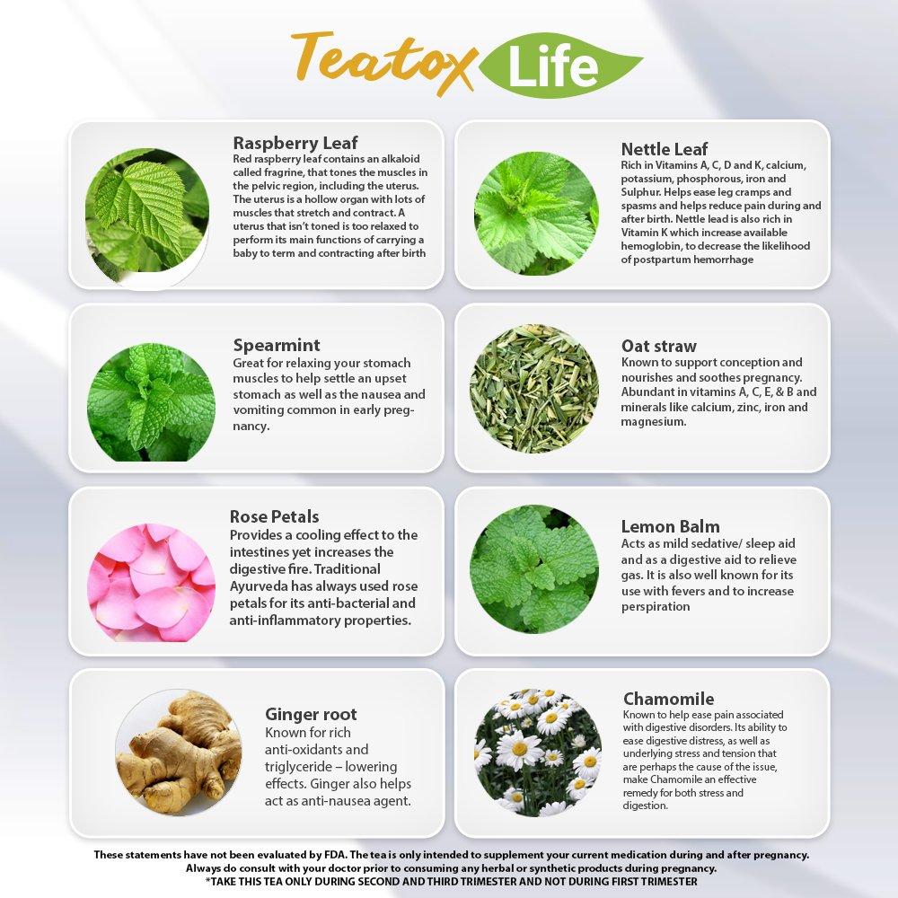 Amazon com: Red Raspberry Leaf Tea, Rasberry Leaf Fertility