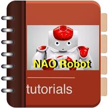 Guide To NAO Robot