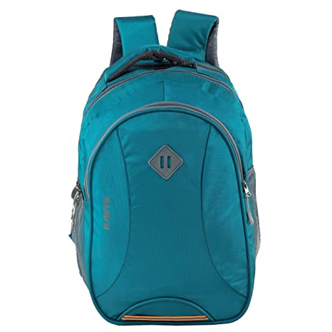 Kavi's Unisex Polyester and Nylon 17 inch Laptop Backpack with Rain Cover  Sky Blue  Laptop Backpacks