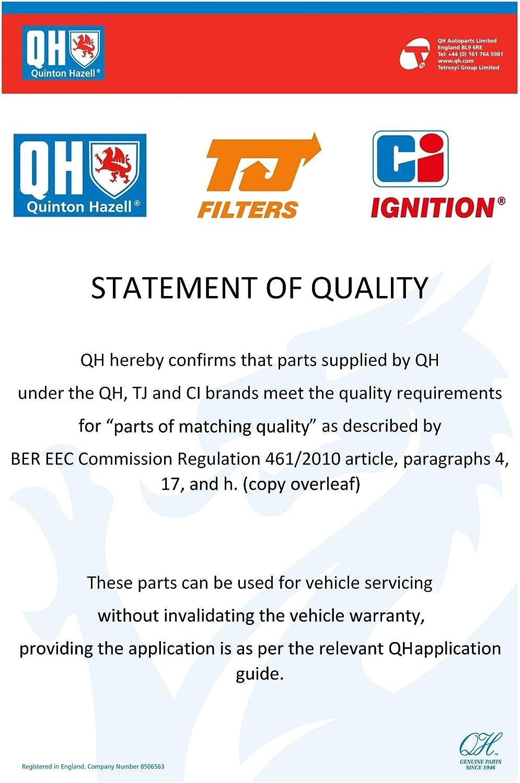 QH-Benelux QFP88 Fuel Pump