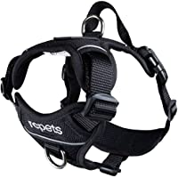 RC Pet Products Momentum Dog Harness, Small, Black