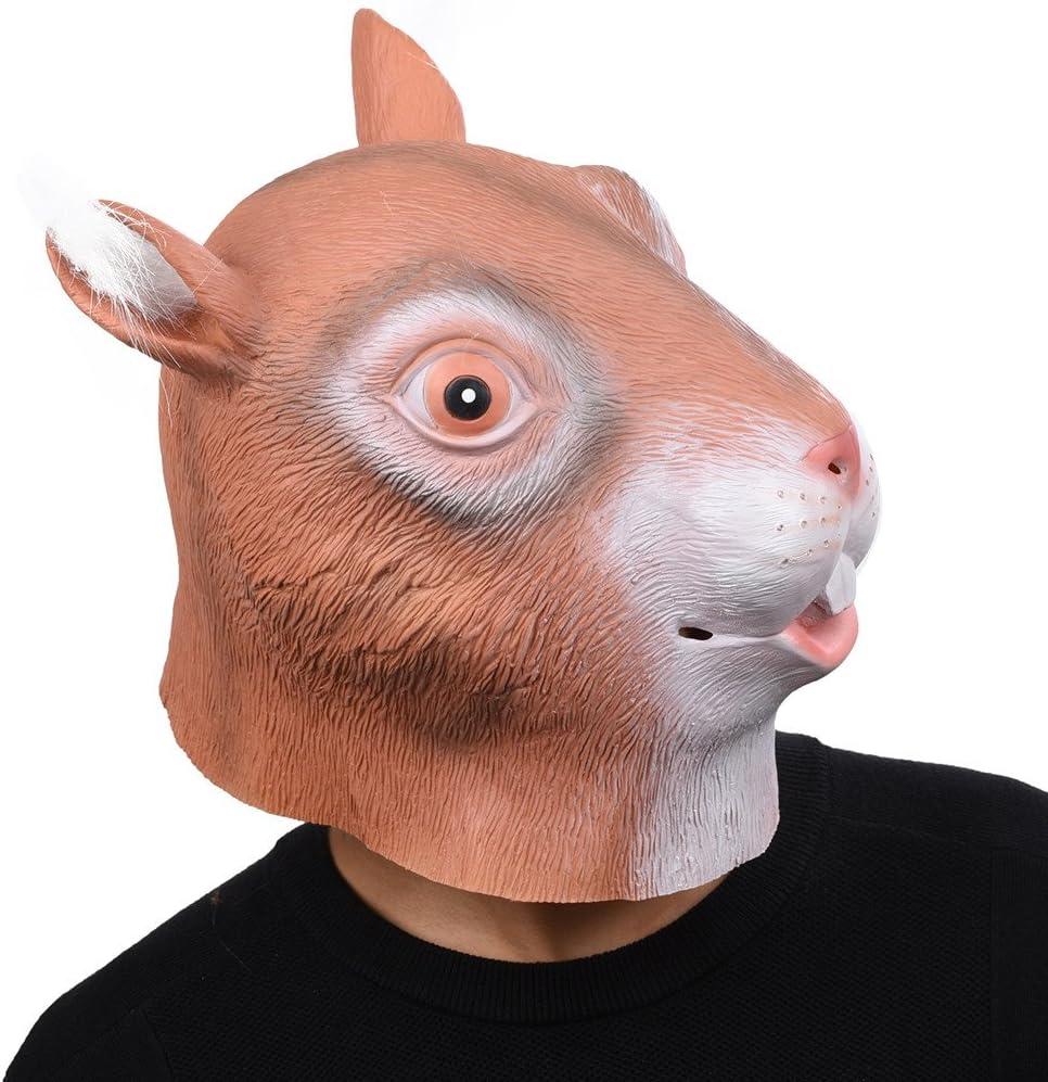 Party Story Ardilla Máscara de Animal de Látex Novedad Disfraz de ...