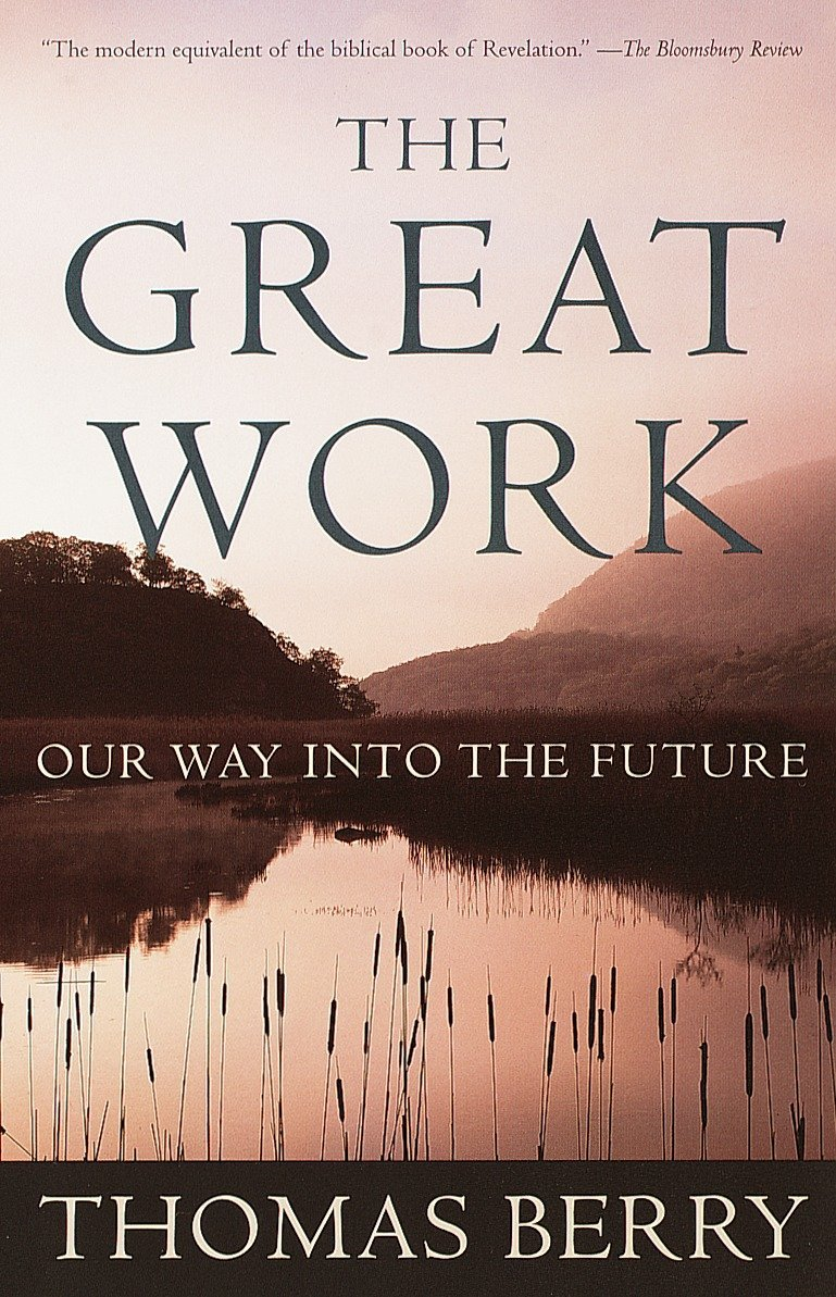 The Great Work: Our Way into the Future pdf