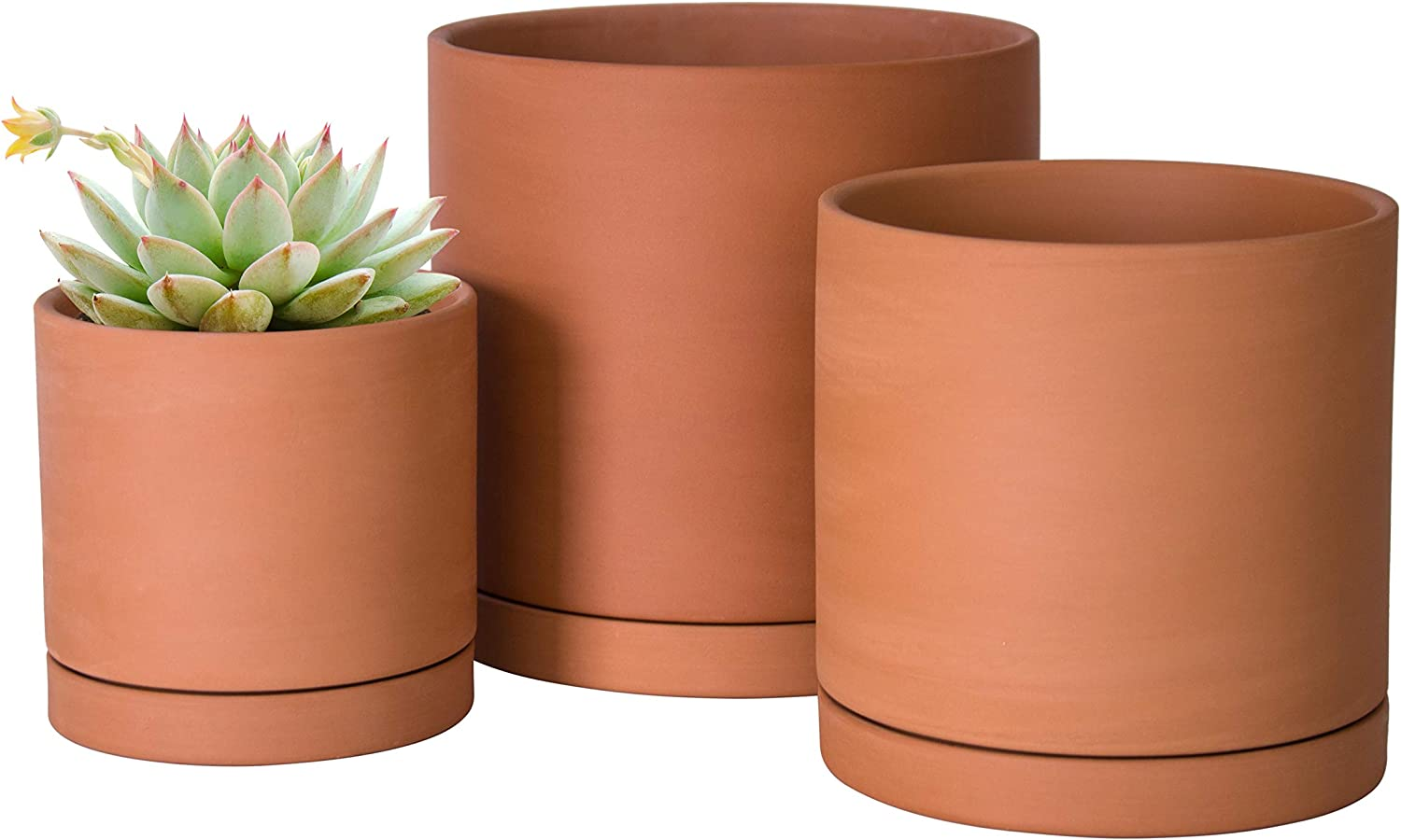 Terracotta Pots with Drainage Hole & Saucers