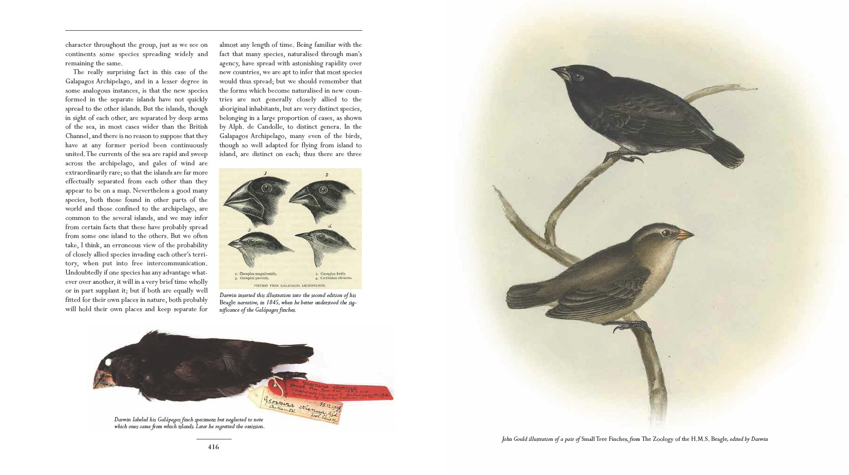 On the Origin of Species  (Illustrated and Bundled with Charles Darwin Library)