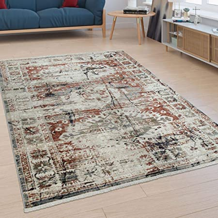 Paco Home Tapis Poils Ras Salon Bordure Design Oriental Moderne Aspect Usé  Coloré, Dimension:80x150 cm