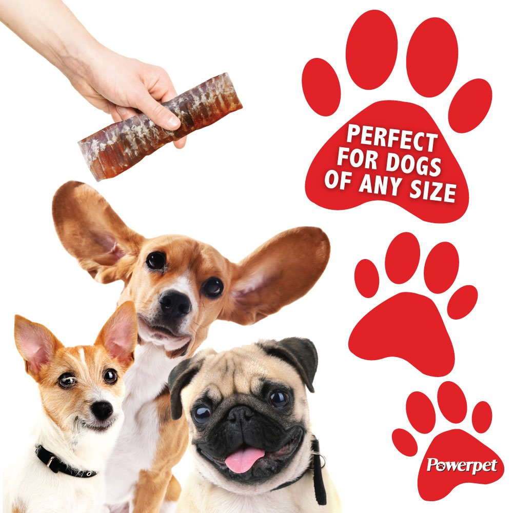 Powerpet: Beef Trachea 6in - Natural Dog Chew - Helps Improve Dental Hygiene - 100% Natural & Highly Digestible - Protein with Low Fat - Beef Jerky Dog Treat - Made from Beef Esophagus by Powerpet (Image #6)