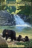 Abrams Falls - Great Smoky Mountains National Park, TN (9x12 Art Print, Wall Decor Travel Poster)