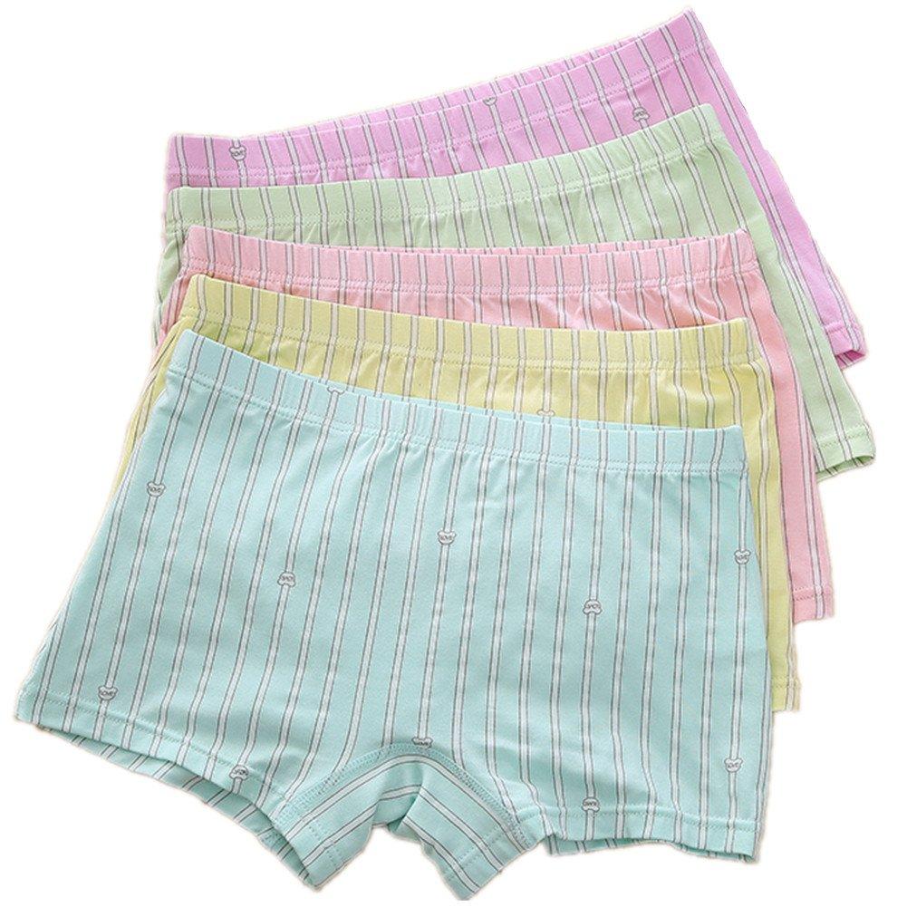 Big Girls' 5-Pack of Brief Underwear Hipster Bundle Boyshort