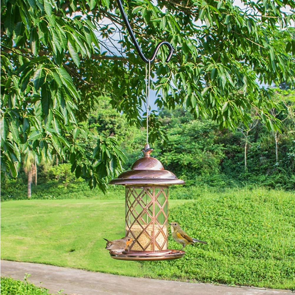 DJLOOKK Mangiatoia per Uccelli, Mangiatoia per Uccelli, Mangiatoia per Uccelli, Uccelli, Uccelli, Tubo Trasparente per trogolo, Antipioggia, Adatto per Balcone Esterno, Pappagallo 12cf22