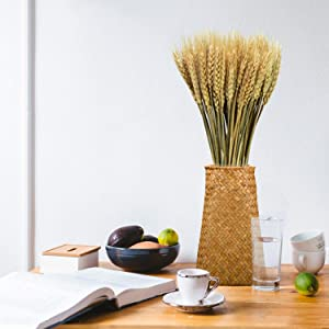 Pomeat Wheat Stalks, 100Pcs Dried Wheat Stalks Golden Dried Natural Wheat Sheave Bundle Flower for Home Kitchen Table Wedding Decoration - 15.75Inch