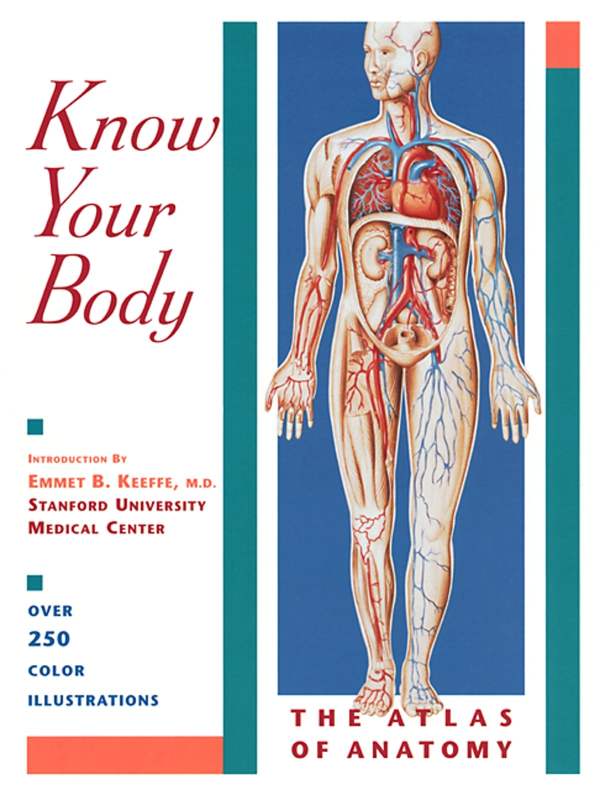 Know Your Body The Atlas Of Anatomy Emmet B Keeffe 9781569751664