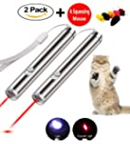 Cat Laser Pointer Interactive Dog Toy –  Pet Training Exercise Tool with extra bonus of a Squeaky Mouse