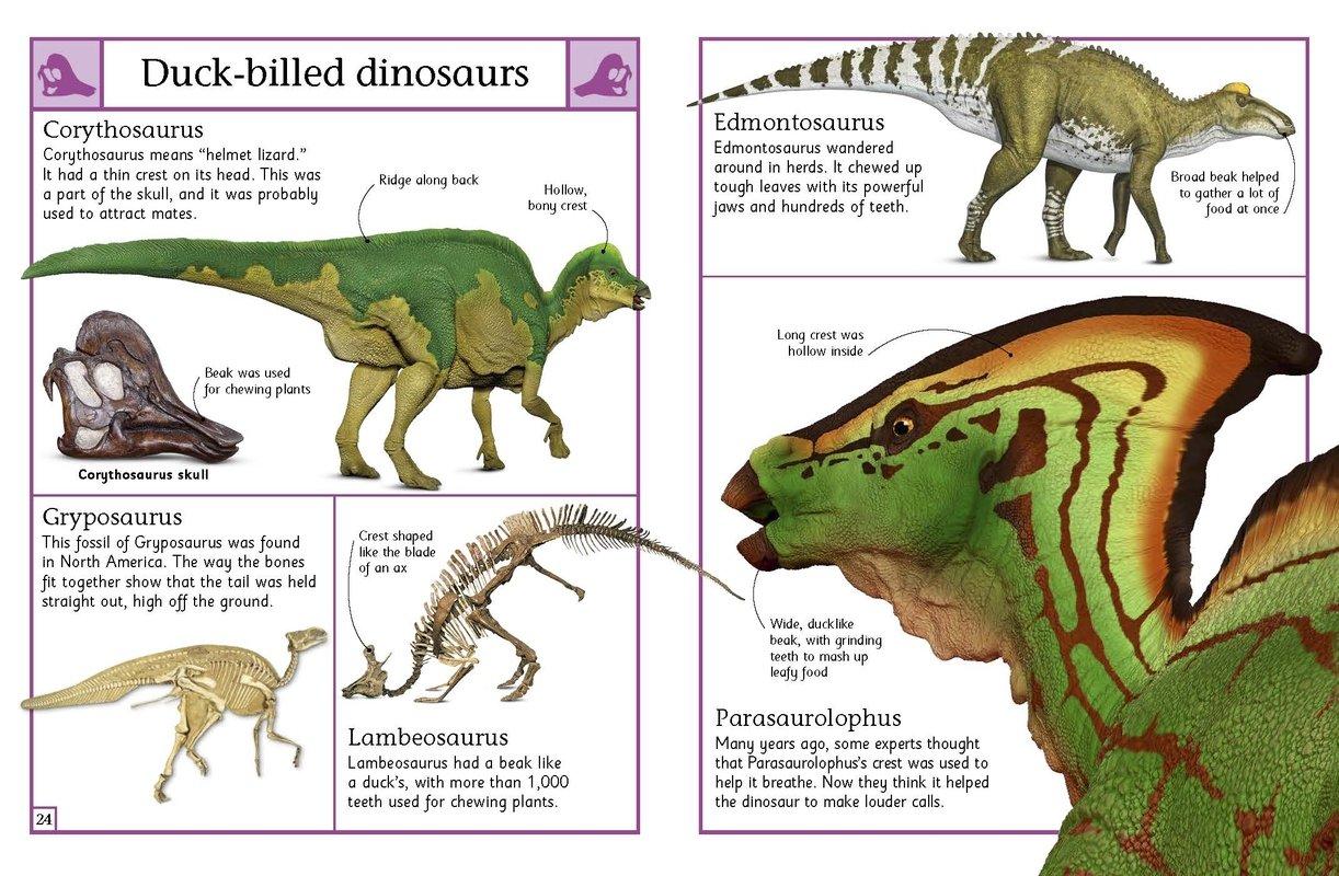 the big book of dinosaurs dk publishing 9781465443779 amazon