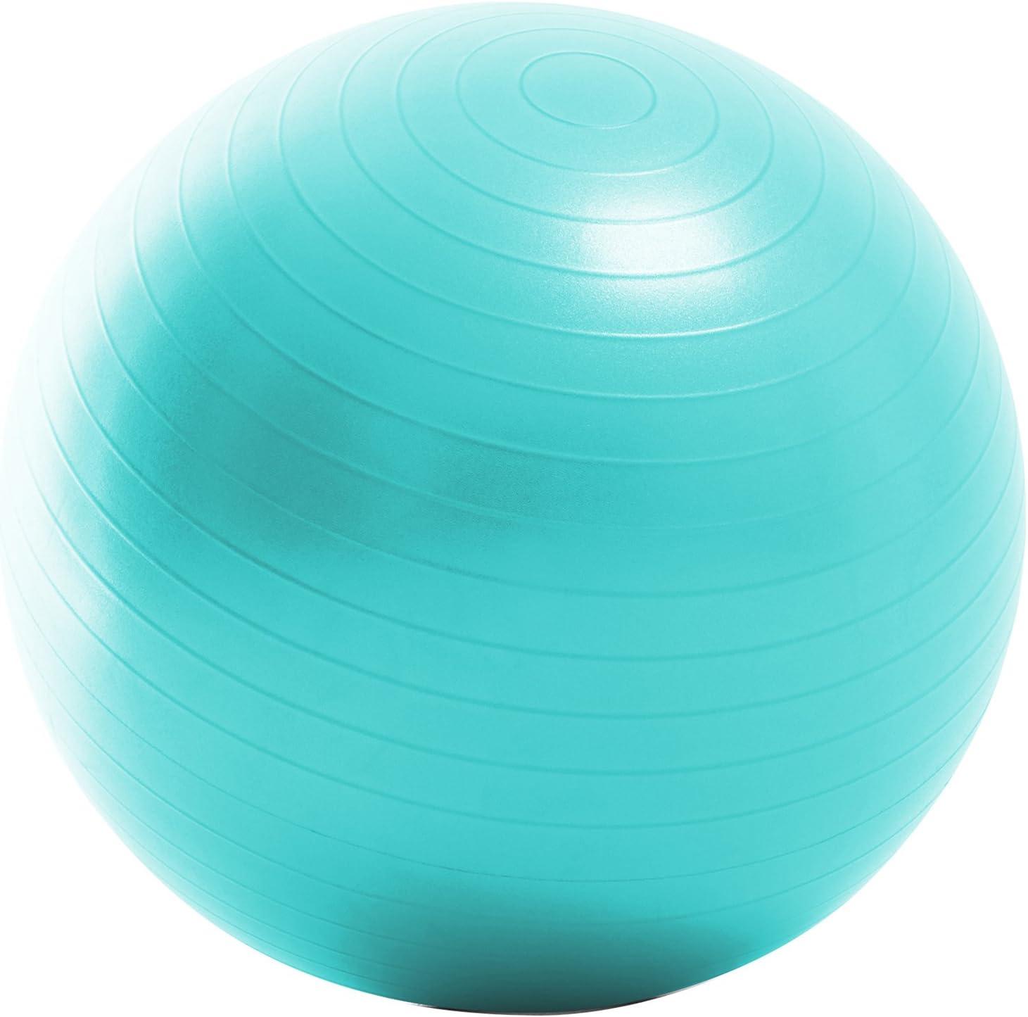La-VI バランスボール ハンドポンプ&メジャー付き
