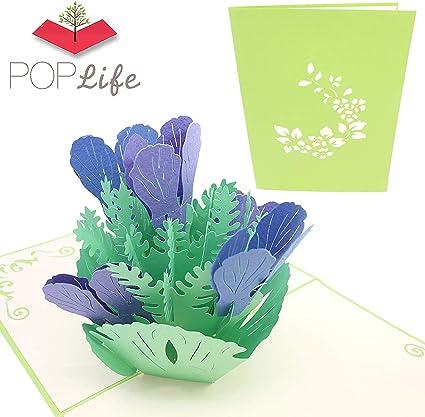 Poplife Greeting Cards Poplife Cartes De Voeux Bleu Iris
