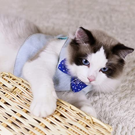 Wangjie Arnés para Gatos Ropa Acolchado para Mascotas con Lazo Ajustable Cómodo Suave Elegente de Diseño