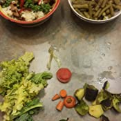 Amazon Com Food Cycler Platinum Indoor Food Recycler And