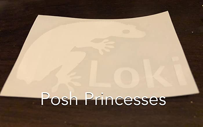 45ac2bb3a222 Amazon.com: Crested Gecko Frog Butt, Dropped Tail, Personalized ...