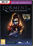 Torment: Tides of Numenera (PC DVD)