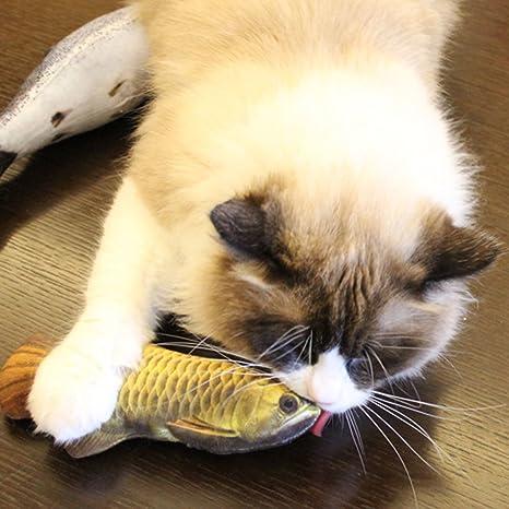 HuaYang 20 cm Longitud Juguete de peces gatos peluche en tejido peces Simulation – Arowana